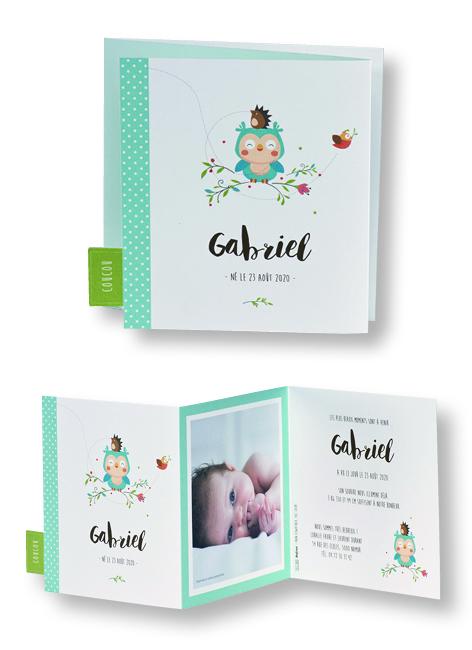 """Faire-part de naissance """"L'Annonce du Petit Hibou"""" 507080"""