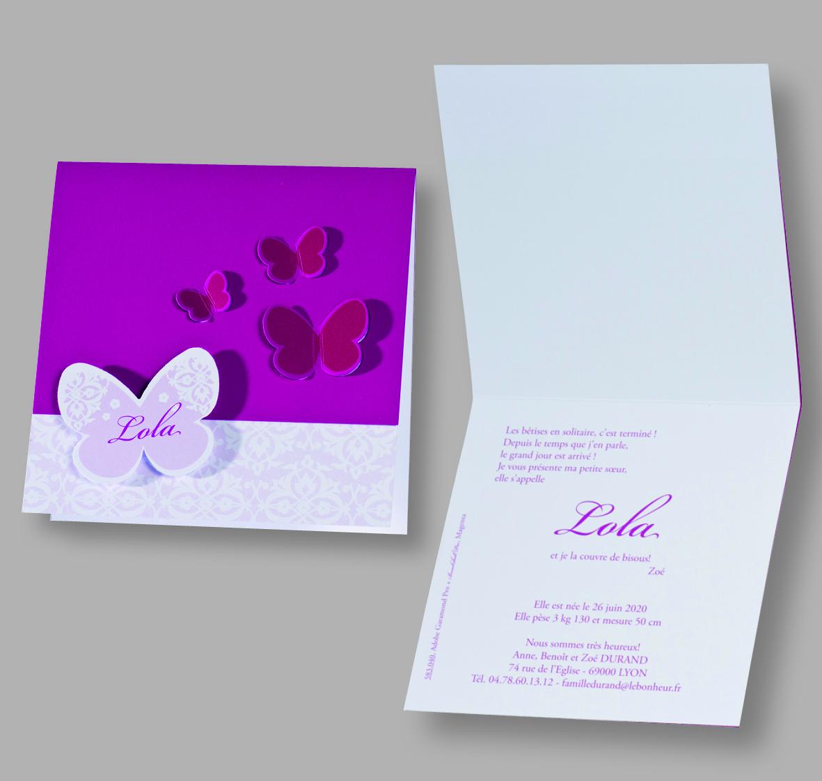 Faire-part naissance papillons 583040