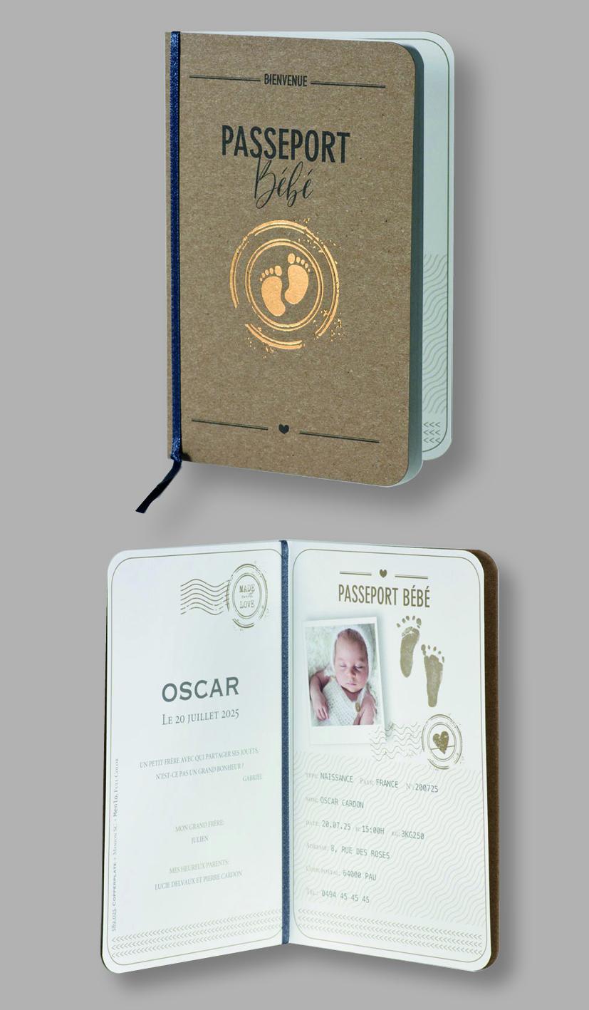 Faire-part naissance passeport bébé 589025